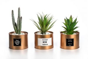 best black friday & cyber monday 2019 deals on plant decor in home
