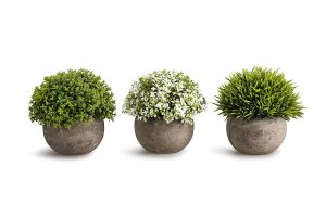 best black friday & cyber monday 2019 deals on plant decor for the living room