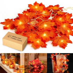 Best Harvest Decoration Black Friday & Cyber Monday 2019 [Deals Sales Offer] 3
